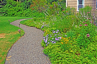 Curvy gravel path with beautiful flower border